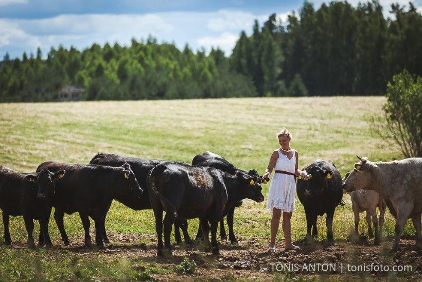 Avatud talude päev saab avalöögi 20. juulil Maamehe golfi talus