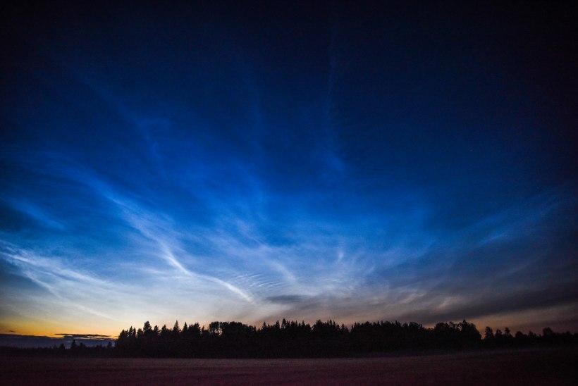 GALERII | Taevas sädelesid helkivad ööpilved