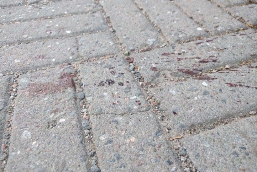 FOTOD SÜNDMUSKOHALT   Pealtnägijate sõnul löödi 26aastast meest terava esemega kubemesse