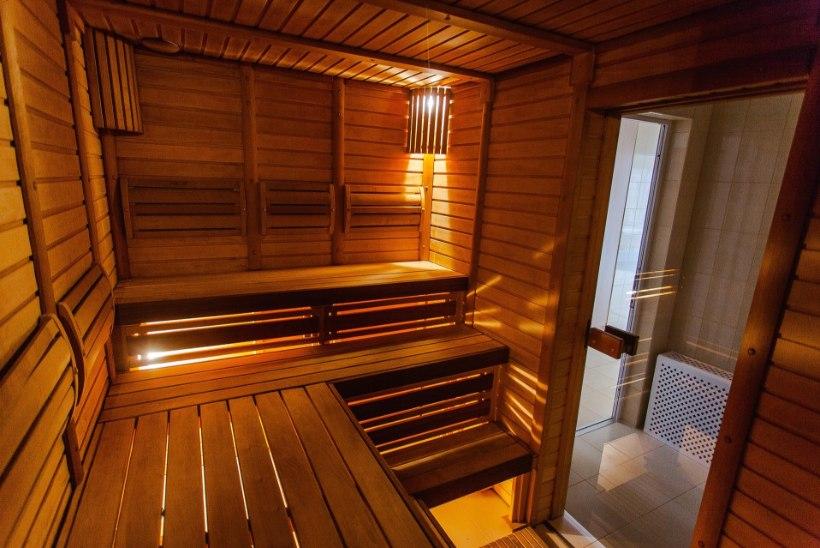 Ekspert annab nõu: kuidas valida saunakerist?