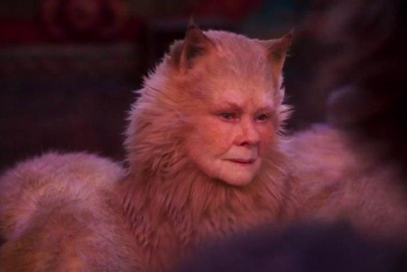 """VÕIGAS! JÄLE! """"Catsi"""" filmiversiooni treiler tekitab vaatajais õudust"""