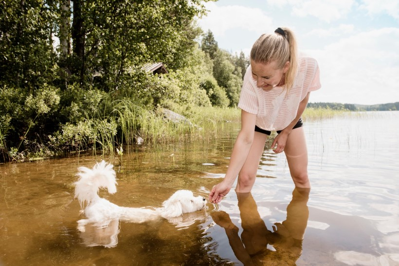 SOOMLASED MURES: riigis sünnib varsti koeri rohkem kui lapsi