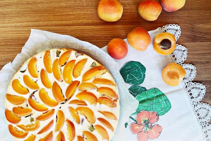 Kohupiimakook rabarberi ja kullakarva aprikoosidega!