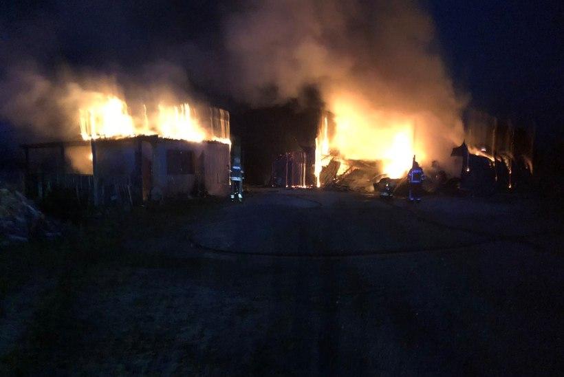 FOTOD | Saue vallas põles angaar lahtise leegiga, tuli levis ka kõrvalhooneni