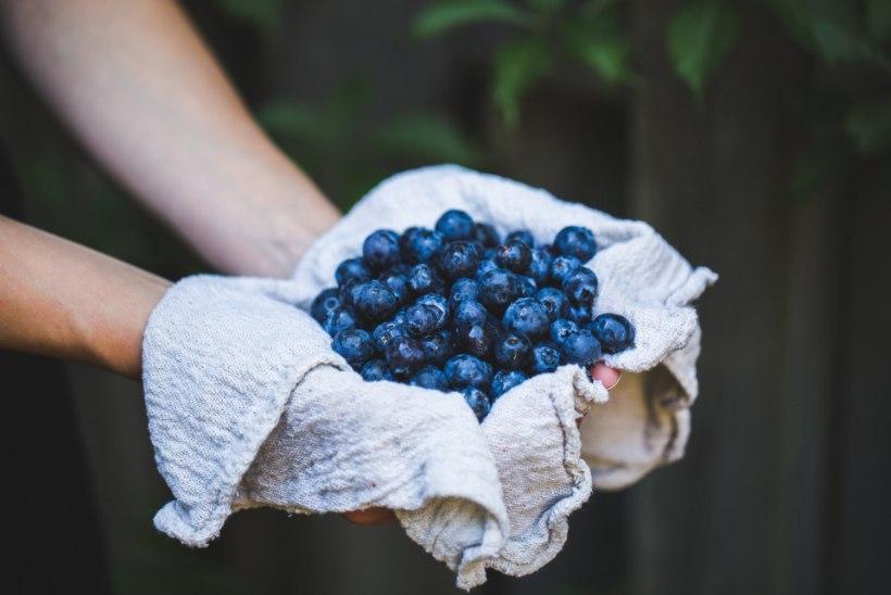 VAATA HOOLIKALT, MIDA SÖÖD! Need 16 toitu võivad päästa su südame