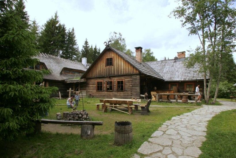 VARASTATUD MÕÕKADE OTSINGUL: Viikingite küla palub abi terariistade leidmisel
