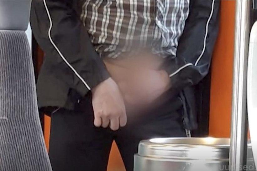 TV3 VIDEO | Elroni rongis ahistas reisijaid ennast rahuldav kiimas mees