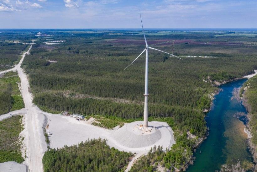 KOHTUVÕIT: Aidu tuulepargi arendaja saab taas oma tuulikutele ligi