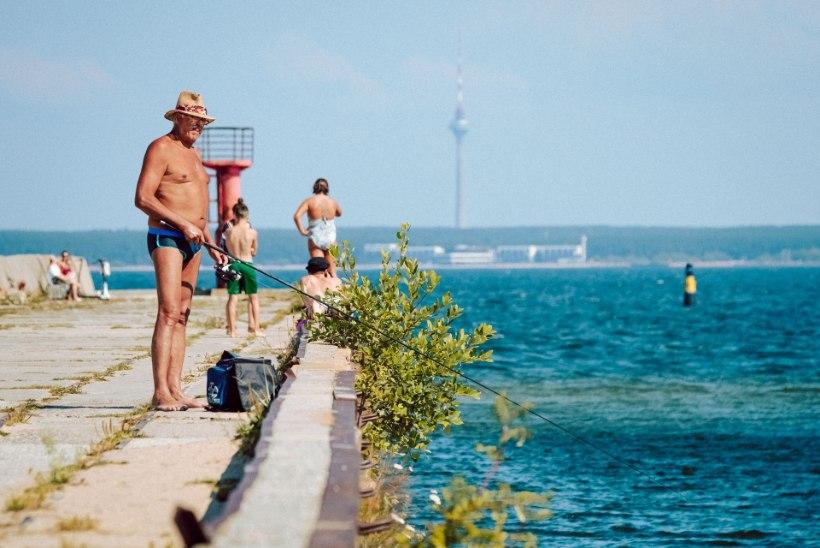 GALERII | NII KUUM ON TUNNE: kuumalaine täitis Tallinna rannad nautlejatega