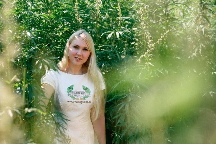 Kanepit kasvatava talu perenaine: ikka ja jälle käib keegi põllul raksus