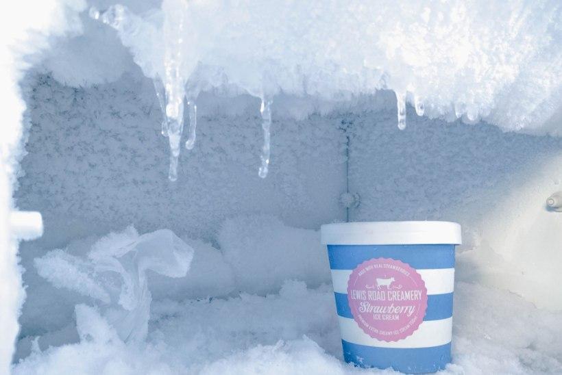 Suvesaak külma: kuidas osta pere vajadustele sobiv sügavkülmik?