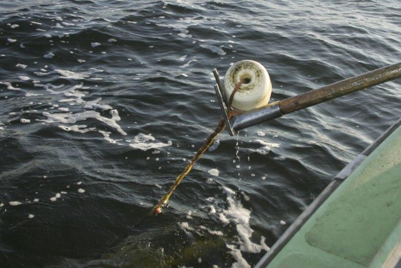 Keskkonnainspektorite töömailt: milliseid pahandusi teevad Peipsi kalamehed?