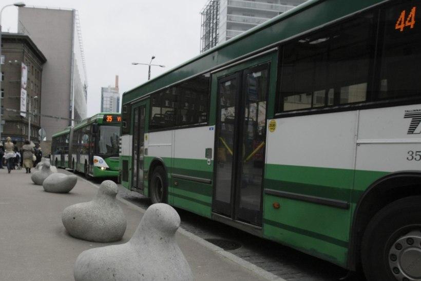 Seisukoht   Kas buss tuleb?