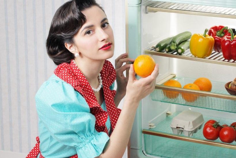 LOE KINDLASTI: puhkusele mineja meelespea, kuidas külmiku sisu elluärkamist vältida