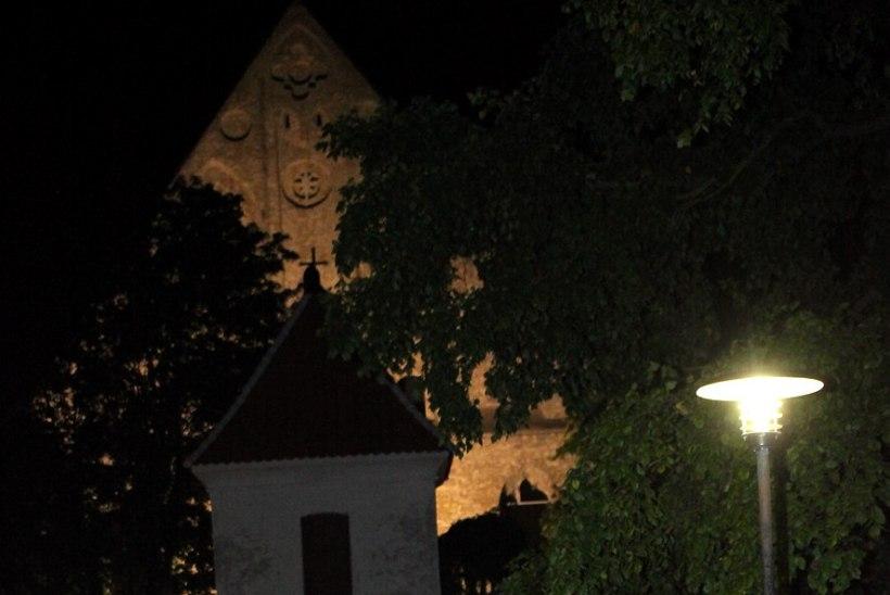 """GALERII   Birgitta festivali avas erakordne visuaalteatrietendus """"Planeet Harmoonia"""""""