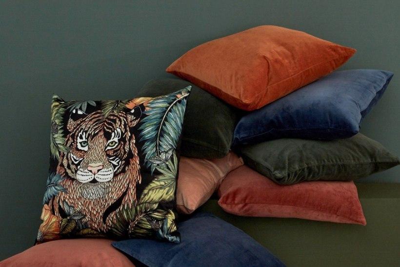 Kassid on tagasi! Hemtexi uus sügisene kollektsioon valmis koostöös Rootsi kunstniku Nadja Wediniga