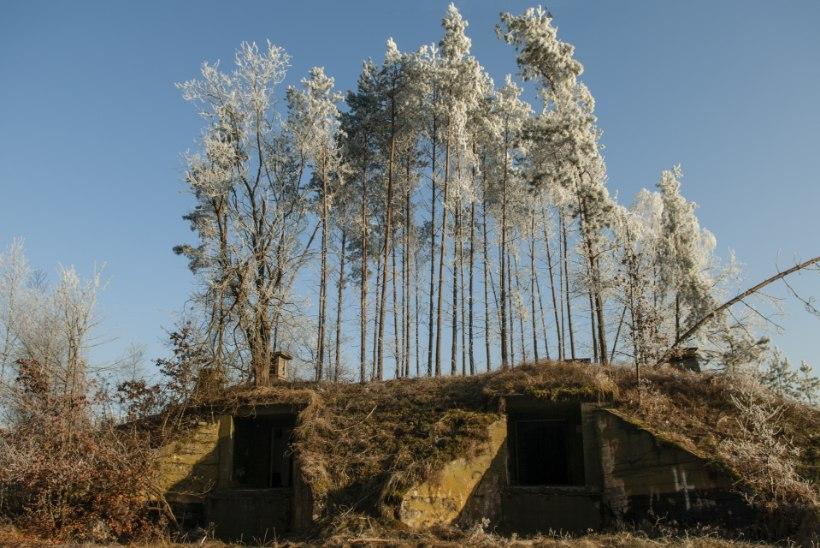 Dannenwalde raketiplahvatus oleks võinud lõppeda tuumakatastroofiga