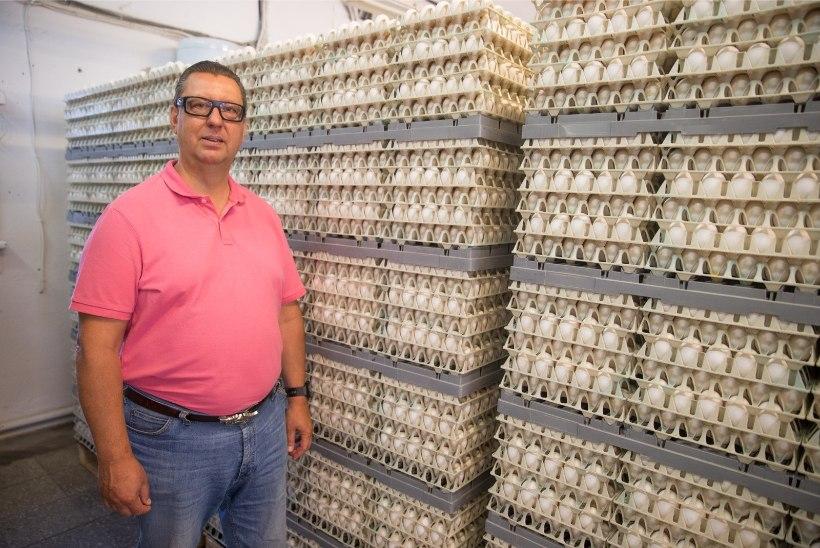 HÄIRIV VIDEO | Võikad kaadrid: Eesti suurima munatootja farmis tapeti kana püssilasuga