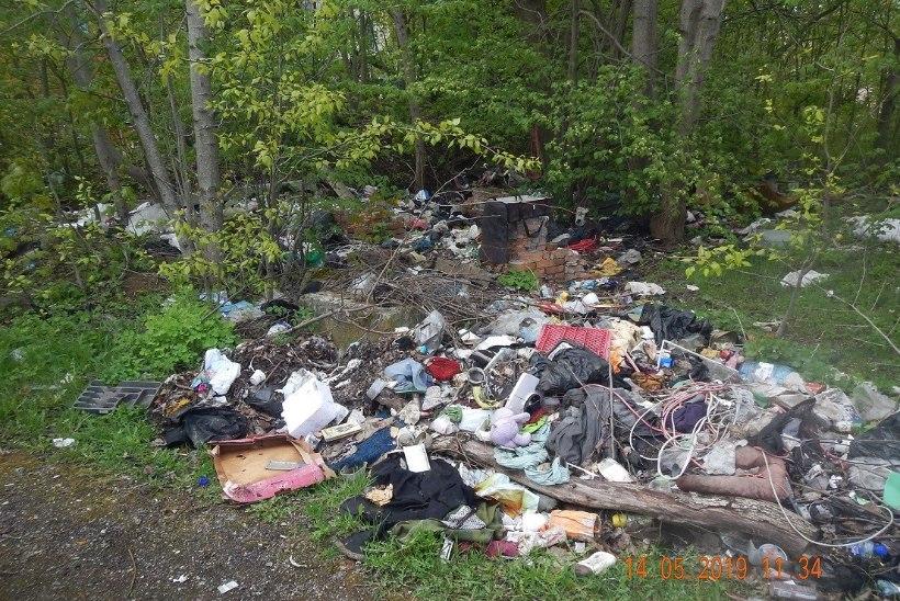FOTOD | Reidi tee ääres hakatakse hävitama asotsiaalide punkrit