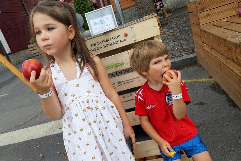 Õunad sulle, raha ... sulle