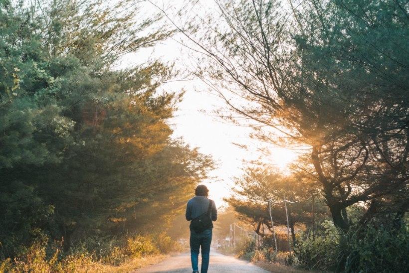 MÄLU ON VILETS? 8 tegevust, mis hoiavad selle paremas vormis