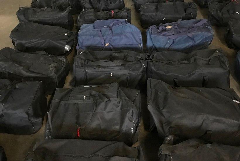 REKORDAASTA: Saksamaal on tollitöötajad tänavu avastanud juba üle seitsme tonni kokaiini