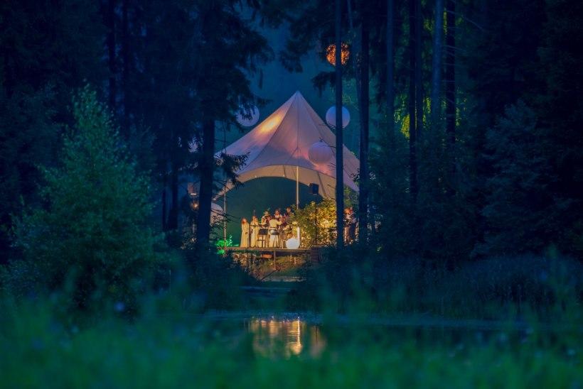 GALERII | Leigo Järvemuusika algas kauni rännakuga metsa