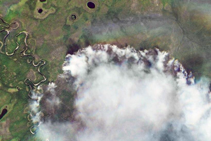 GALERII | SIBER PÕLEB: tulekahjud hävitavad kümneid tuhandeid ruutkilomeetreid loodust