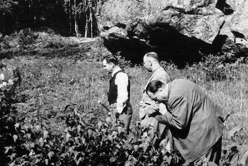Himmleri Eestist pärit ihuarst päästis sadu tuhandeid elusid