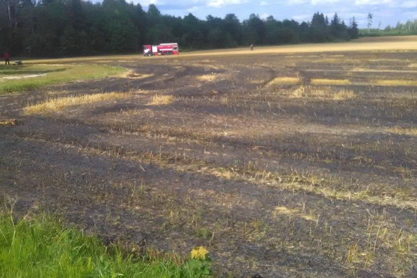 FOTO | Põltsamaal põles paar hektarit viljapõldu