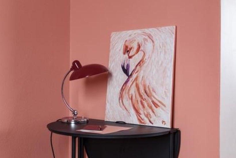Tahad koju midagi uut? Flamingoroosa on selle aasta värv!