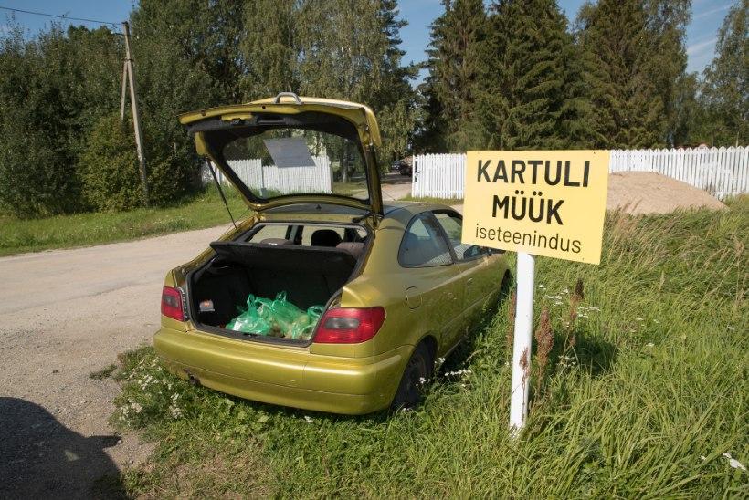 ISETEENINDUS MAANTEEL: peata auto, võta kartul ja pane raha karpi!
