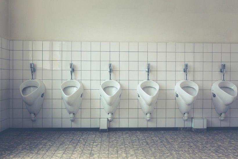 MIKS SU JUURES ON IMELIK LEHK? Need 4 haisu kõnelevad tõsisemast tervisemurest