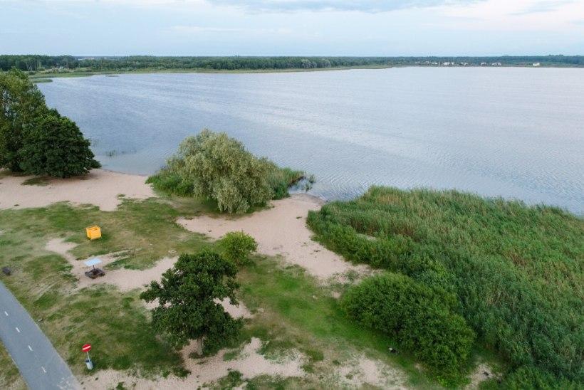 LlIGSELT SOOLEBAKTEREID: terviseamet hoiatab Maardu järves ujumise eest