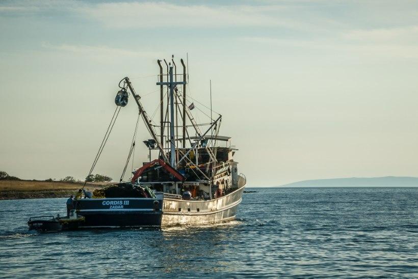 Biolisandiga kütus kahjustab ka kalalaevu