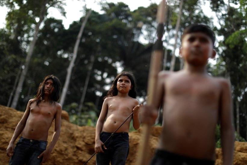 """AMAZONAS OHUS: lekkinud saladokumendid paljastavad Brasiilia presidendi sünged plaanid """"maakera kopsude"""" tulevikuks"""