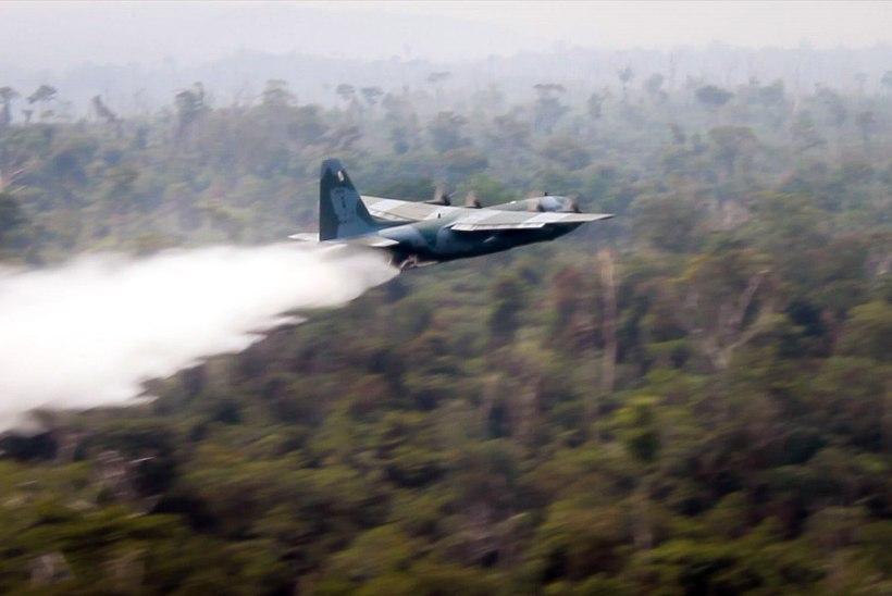 Brasiilia saatis kustutustööle 44 000 sõdurit