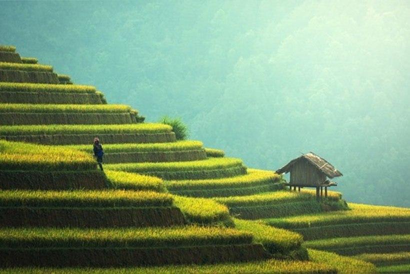 Indoneesia plaanib luua kümme uut Balit