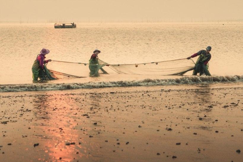 Hiina asub võitlema elektri ja lõhkeainega kalastamise vastu