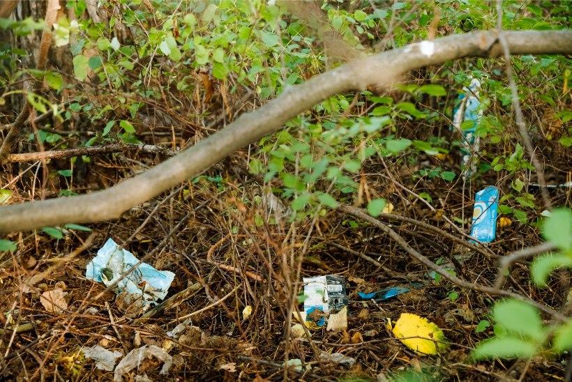 Oluline üleskutse: ära jäta metsa oma prügi vedelema!