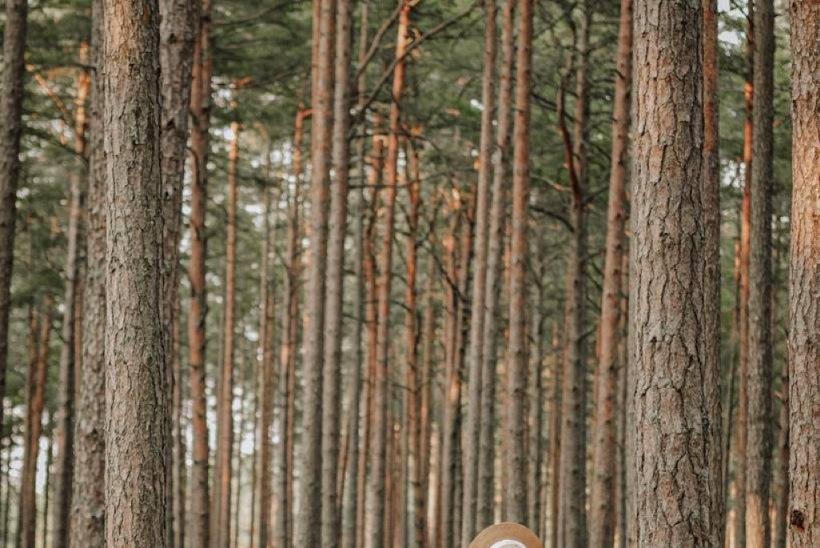 Puhkus Eestis: lemmikkohti üles pildistades soojendad end külmal ajal mälestustega