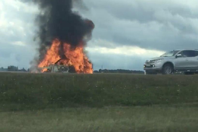 VIDEO   Tallinna-Narva maanteel põles sõiduauto maani maha