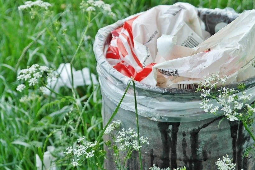 Prügisorteerija spikker: kuidas sorteerida ning millisesse jäätmekonteinerisse erinev prügi viia?