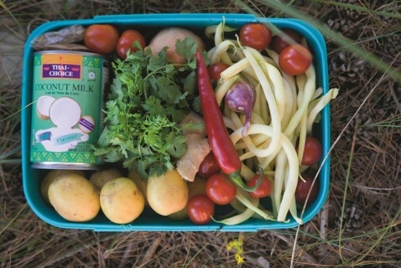 Kosutav matkatoit: kartulipada kookospiima ja väikese vürtsiga