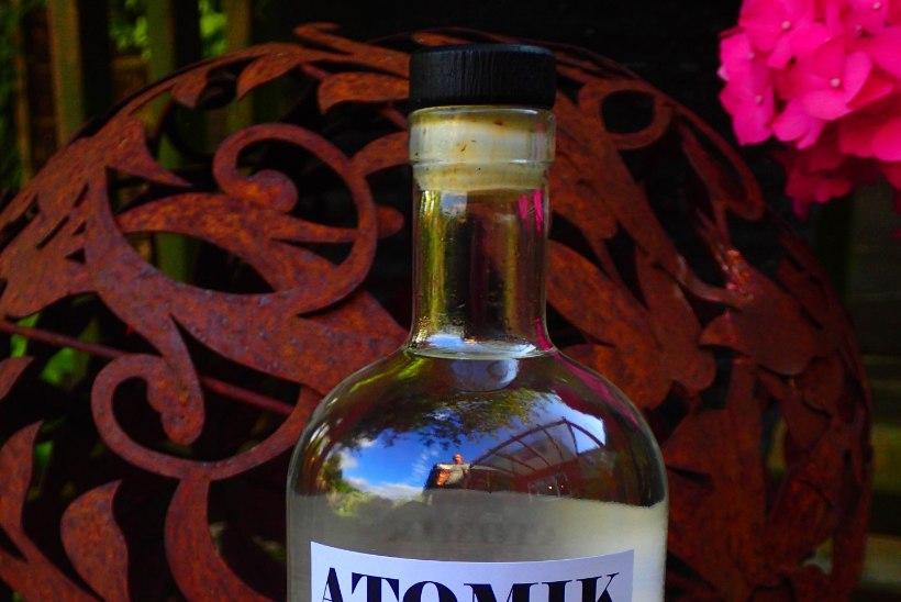 JULGED PROOVIDA? Teadlased lõid Tšernobõli keelutsoonis kasvanud radioaktiivsest teraviljast viina