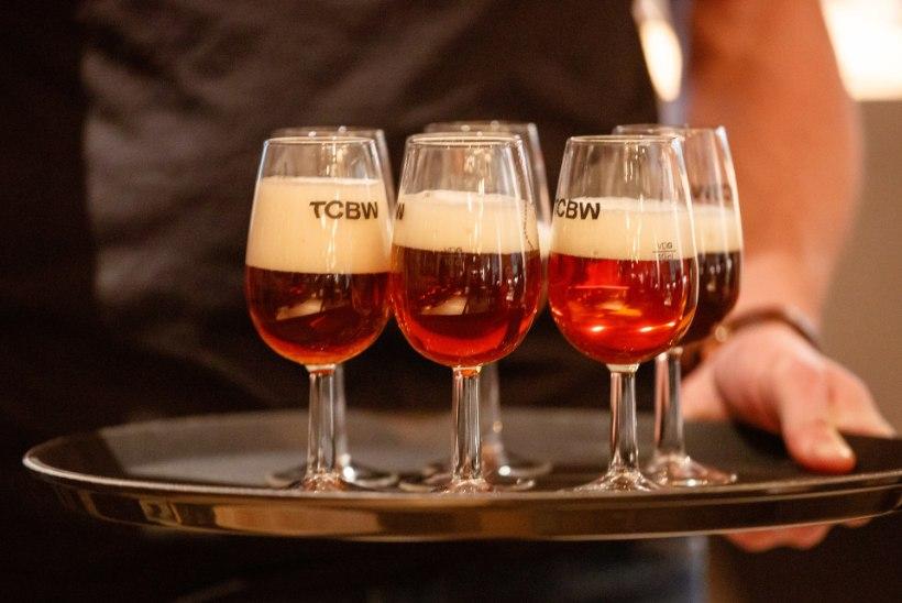 Tšehhist õllefänn: Eestis õllenaudingut ei saa