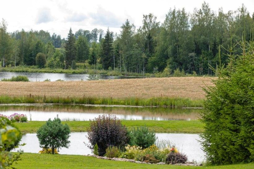 GALERII | Kodukirja lugejareis viis imelisse aeda Võrumaal
