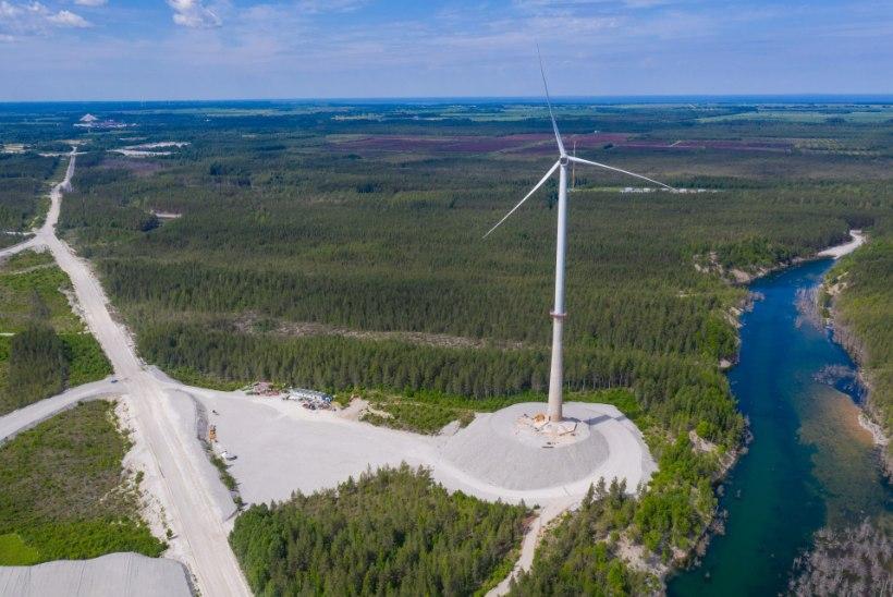 Kohtuvõidu saanud Sõnajalad hakkavad uusi tuulikuid püstitama juba sel aastal