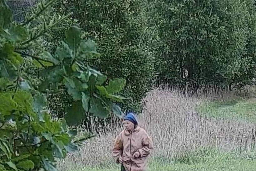 Politsei otsib Kehras metsa läinud 81aastast Janinat