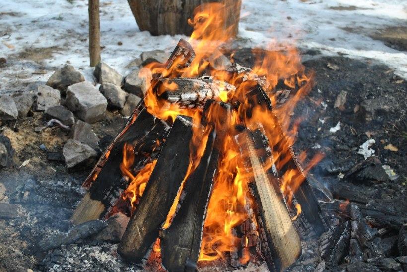 LEEK ÜLES! Nõuanded, kuidas ehitada korralik lõke